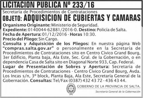 Licitación: Licitación Pública Nº 233/16