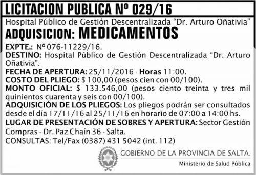 Licitación: Licitación Pública Nº 029/16