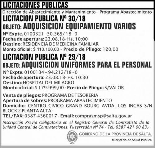 Licitación: Licitacion Publica 30 y 29 MSP