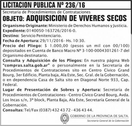 Licitación: Licitación Pública Nº 236/16