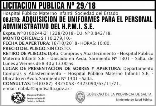 Licitación: Licitacion Publica 29 MSP HPMI