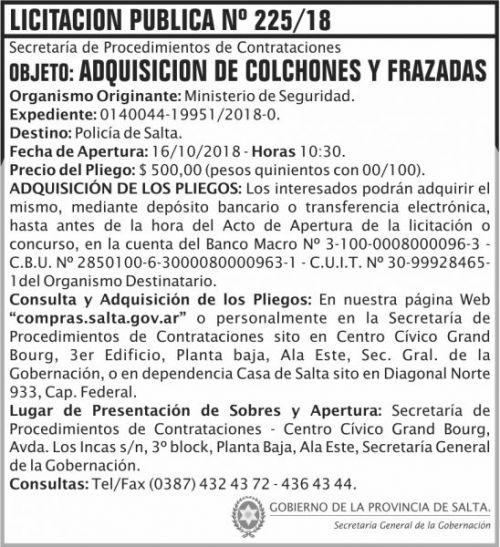 Licitación: Licitacion Publica 225 SGG MS