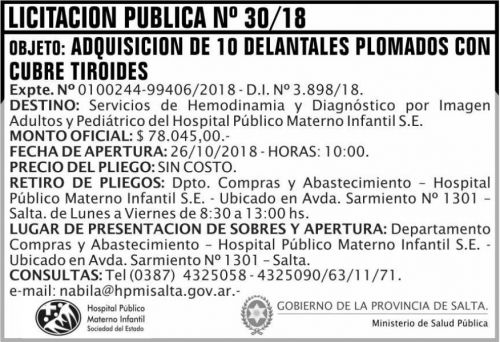 Licitación: Licitacion Publica 30 MSP HPMI 2x5