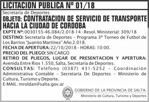 Licitación: Licitacion Publica 01 SD MCTD 2x5