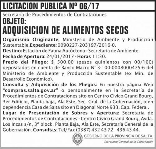 Licitación: LICITACION PUBLICA 06/17