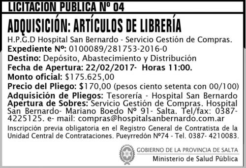 Licitación: Licitación Pública Nº 04