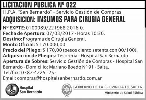 Licitación: Licitación Pública Nº 022