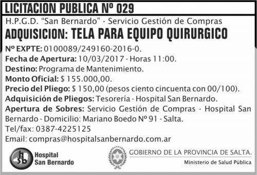 Licitación: Licitación Pública Nº 029