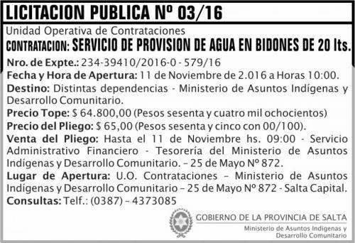 Licitación: Licitación Pública Nº 03/16