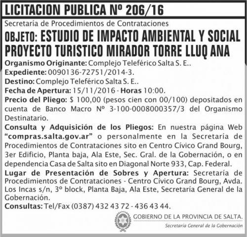 Licitación: Licitación Publica Nº 206/16