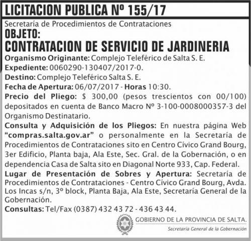 Licitación: Licitacion Publica 155 SGG CTS