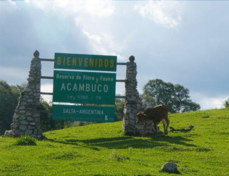 """Uno de los atractivos propuestos por el programa turístico """"Norte Verde"""" es la reserva de Acambuco en el municipio de Aguaray."""