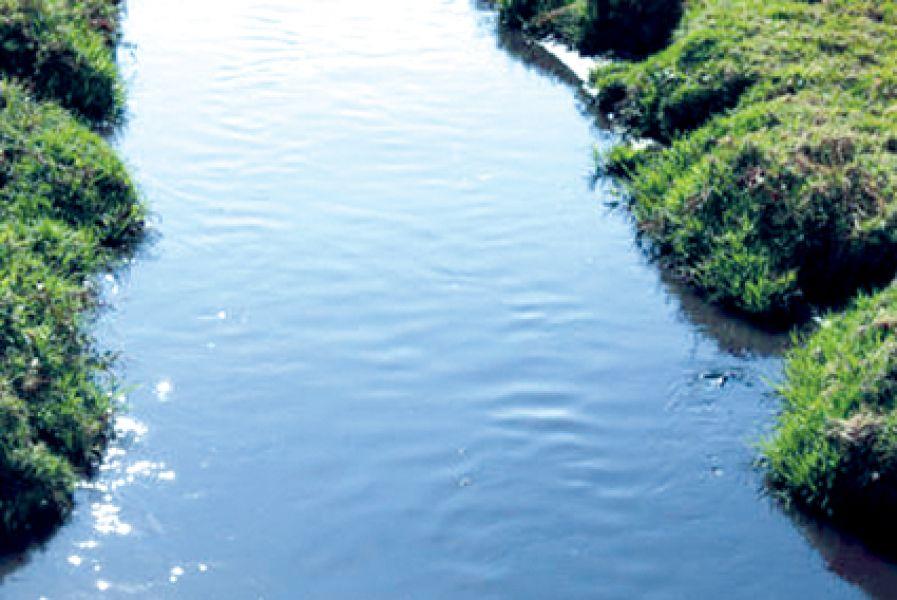 Un vecino dio aviso de un feto flotando en las aguas de un canal que conecta el río San Francisco con el río Bermejo.