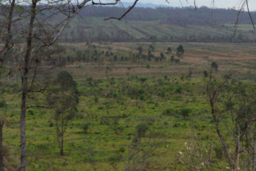 El área desmontada por un finquero en Orán estaba categorizada en color amarillo o sea que debía ser preservada.
