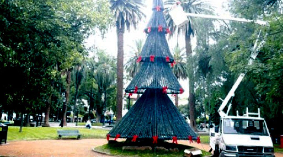 El Arbolito de Navidad de la plaza principal está en plena instalación y la novedad es que este año tendrá luces LED.