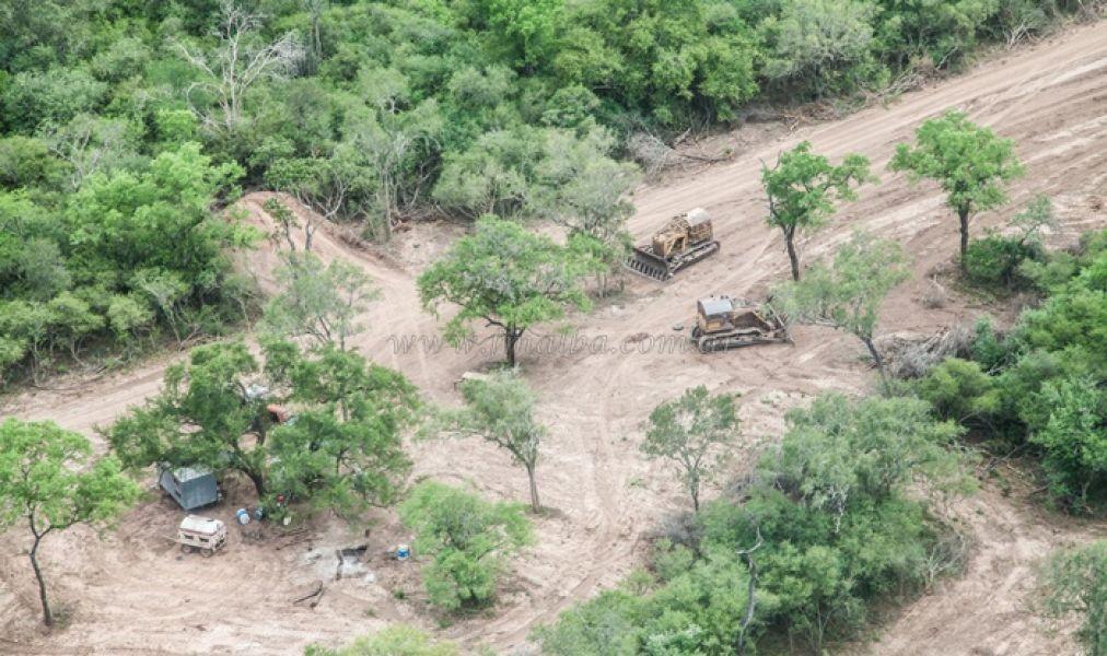 La entidad ambientalista sobrevoló la zona de una finca en General Ballivian, en donde se ven cuatro topadoras.