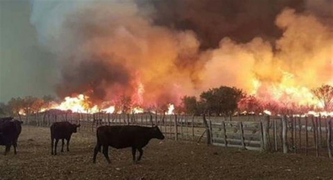 Son cuatro los parques nacionales que se incendian