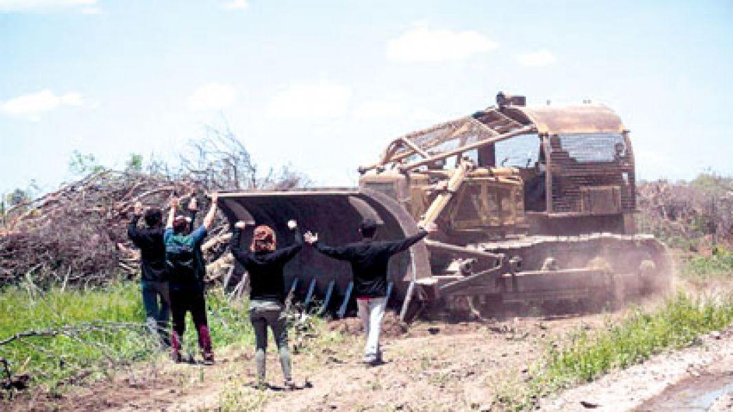 En un informe de Auditoría General de la Nación surge que Salta fue una de las provincias que más desmontó en el país.