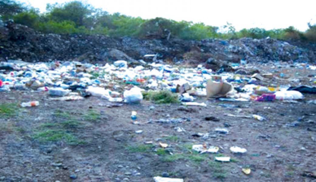 Indicaron que la provincia otorgó unas 20 hectáreas a 13 km. de la ciudad.