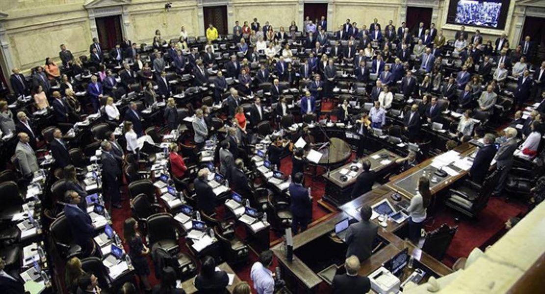 El proyecto se impuso por 133 votos afirmativos contra 94 negativos. Por la negativa votaron los diputados salteños: Martín Grande y Miguel Nanni.