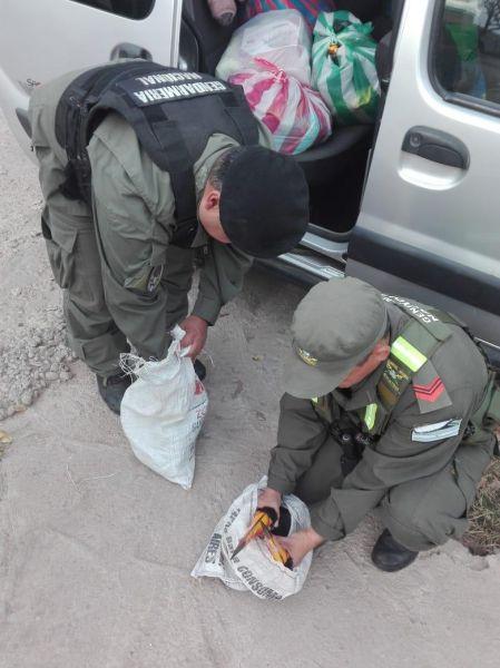 Por el transporte ilegal de tucanes intervino Fauna Silvestre de la Provincia.