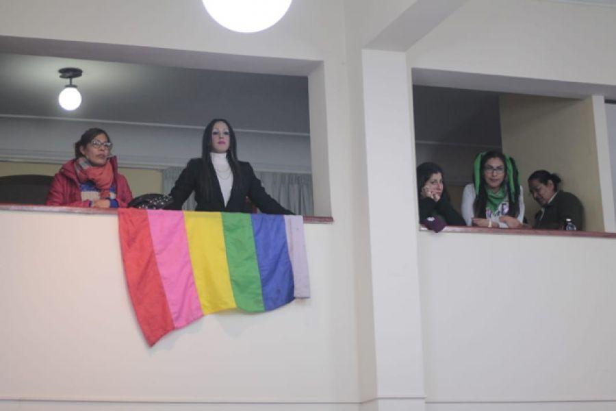 En la sesión del Concejo Deliberante por el fallido cupo laboral trans estuvieron presentes miembros del colectivo LGBT.