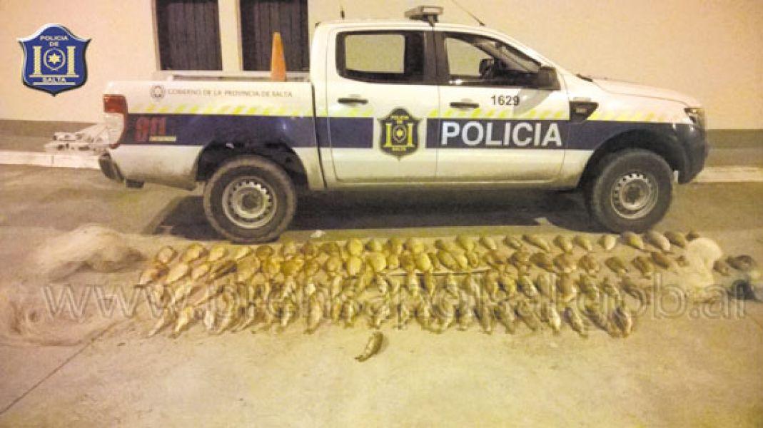Un total de 104 piezas entre sábalos, bagres, bogas y dentudos, se secuestraron el fin de semana en el sur provincial.