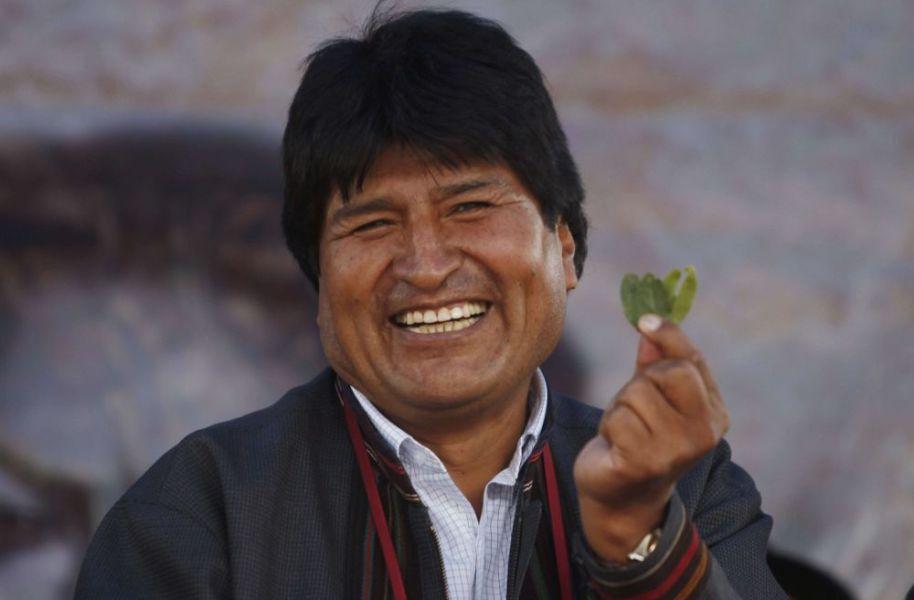 Evo Morales autorizó ampliar sembrados de coca.