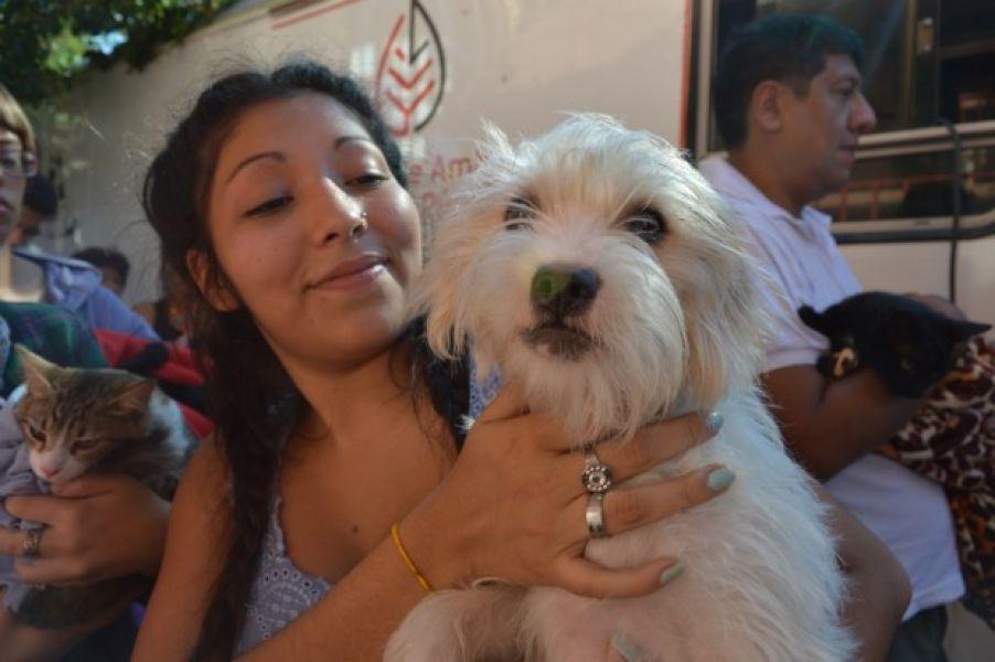 P.E.P.A. es un proyecto que incentiva la tenencia responsable de mascotas en todas las edades