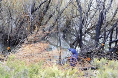 Durante el tercer rastrillaje hallaron un cuerpo en la orilla del Río Chubut.