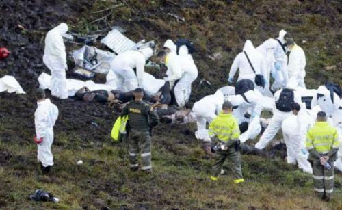 Los cuerpos de rescatistas trabajan arduamente en el lugar de la tragedia.
