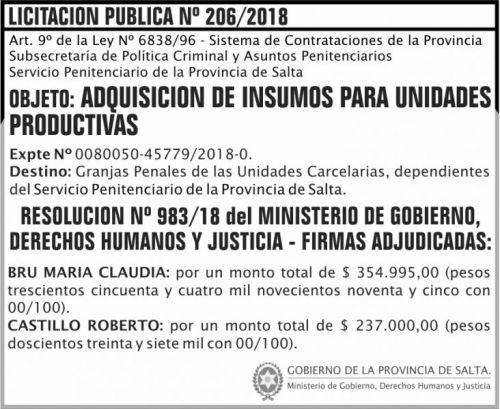 Licitación: Licitacion Publica Adjudicada 206 SPPS MDHJ