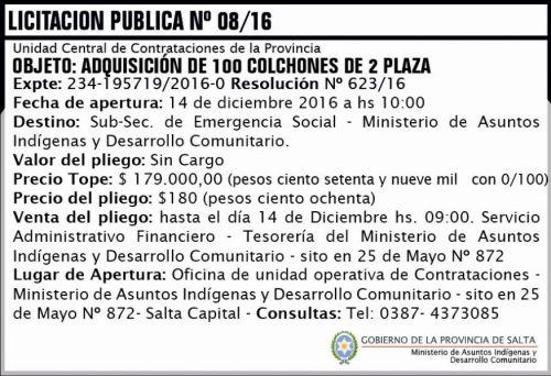 Licitación: Licitación Pública Nº 08/16