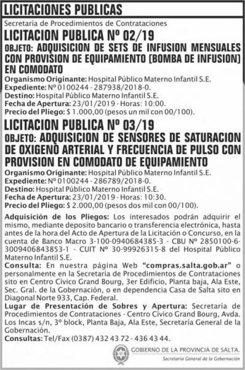 Licitación: Licitacion Publica 01 y 02 SGG HPMI  2x11 ND