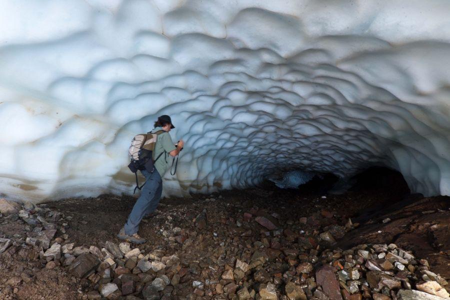 Los túneles se forman una sola vez al año y por poco tiempo