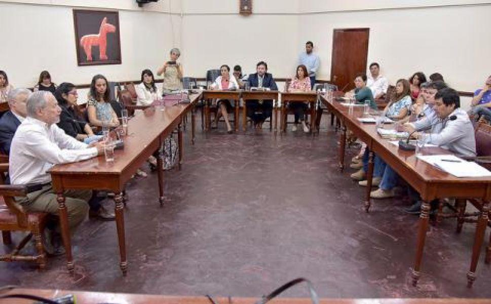 En la reunión ampliada de las comisiones de Medio Ambiente y Servicios Públicos se expusieron distintos argumentos científicos sobre las antenas.