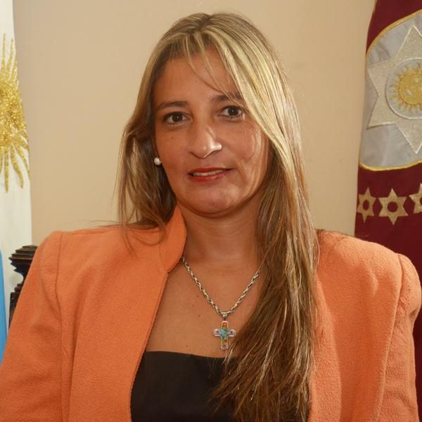 Silvina Abilés, senadora provincial (La Caldera-MMS).