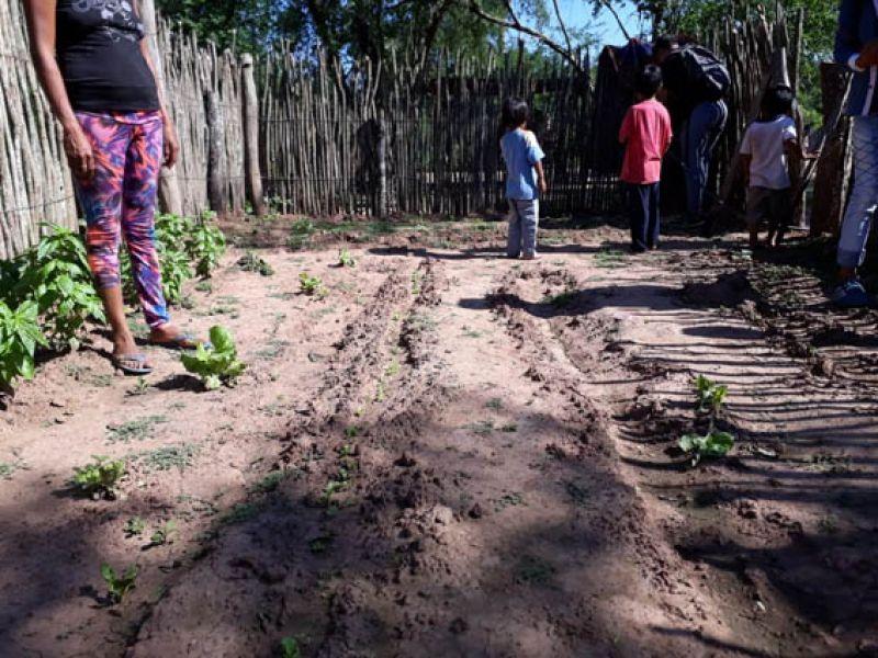 Los acompañantes educativos para este proyecto son entotal de 120, de los cuales 20 pertenecen a Tartagal, y 6 de ellos de comunidades originarias.