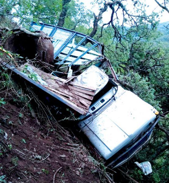Estado en el que quedó el camión que cayó por un barranco con una carga de caballos en Ruta Provincial 6. Hubo dos muertos.