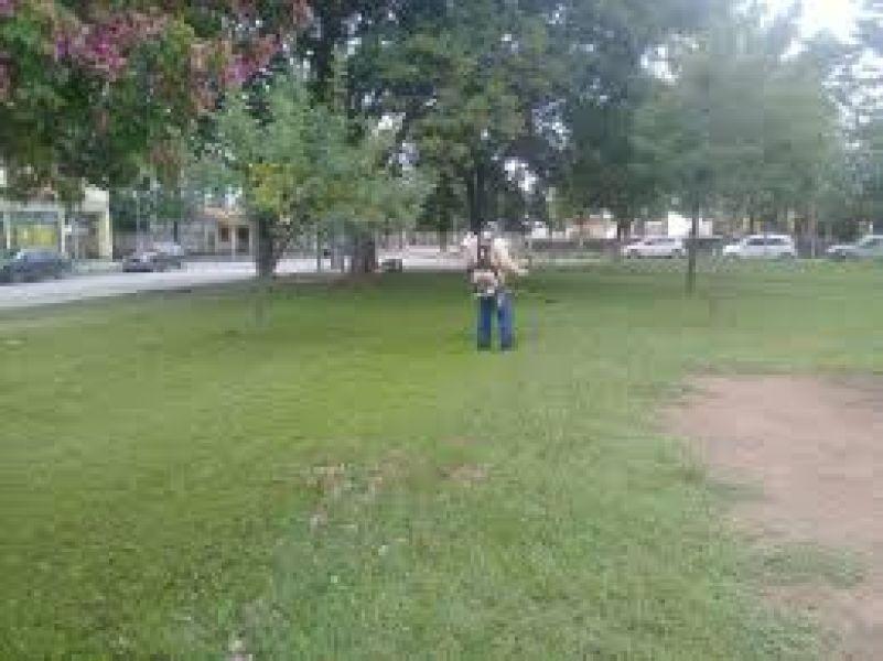 Iniciativa privada que impulsa un parque eco temático de entretenimiento y aventura respetando la flora y fauna. Parque Los Lapachos (imagen ilustrat)